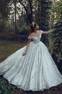 Princess Off The Shoulder Sweetheart Backless Lace Floral Ball Gown Wedding Dresses | Sequin Bridal Gown_1