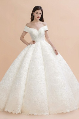 Gorgeous Off The Shoulder Ball Gown Wedding Dress | Lace Backless Bridal Gown_1