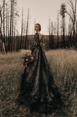 Glamorous V Neck Black Lace Wedding Dresses With Long Sleeves_3