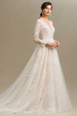 Graceful Long Sleeves Tulle V Neck Wedding Dresses With Lace Appliques_8