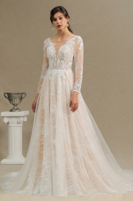 Graceful Long Sleeves Tulle V Neck Wedding Dresses With Lace Appliques_5