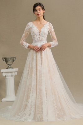 Graceful Long Sleeves Tulle V Neck Wedding Dresses With Lace Appliques_3