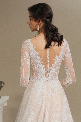 Graceful Long Sleeves Tulle V Neck Wedding Dresses With Lace Appliques_13