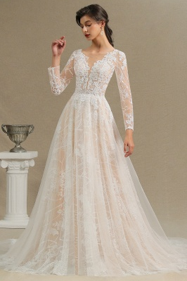 Graceful Long Sleeves Tulle V Neck Wedding Dresses With Lace Appliques_6