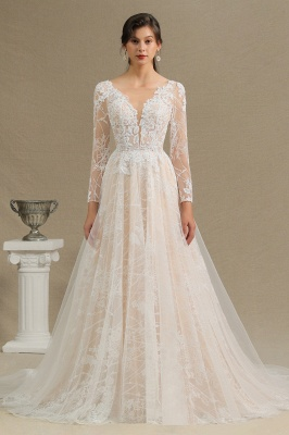 Graceful Long Sleeves Tulle V Neck Wedding Dresses With Lace Appliques_2