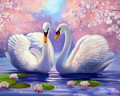Swan Animals Oil Painting Acrylic – DIY Paint By Number