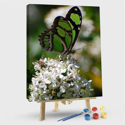 Green Butterflies on Flowers – Flowers Paint By Number