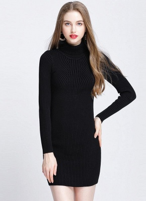 Winter Slim Turtleneck Bodycon Women's Sweater Dress_2