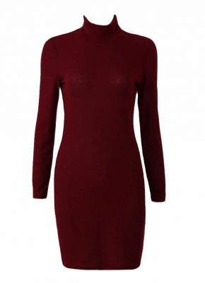 Women Knit Dress Mini Sweater Dress Turtleneck Long Sleeve Solid Bodycon Casual Party Pullover Pencil Dress_1