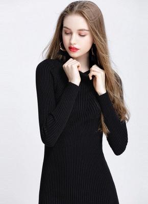 Winter Slim Turtleneck Bodycon Women's Sweater Dress_6