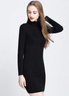 Winter Slim Turtleneck Bodycon Women's Sweater Dress_4