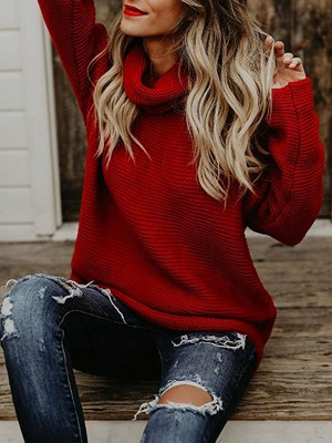 Knitted Casual Shift Long Sleeve Sweater_2