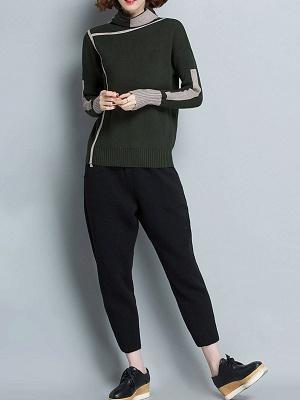 Plain Casual Turtleneck Long Sleeve Shift Sweater_9