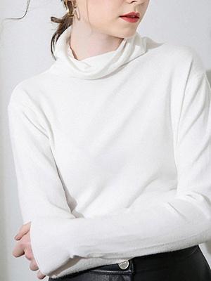 Casual Sheath Turtleneck Long Sleeve Sweater_1