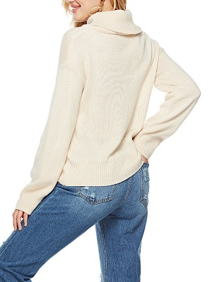 Solid Long Sleeve Casual Turtleneck Shift Sweater_6