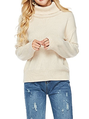 Solid Long Sleeve Casual Turtleneck Shift Sweater_8