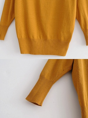 Casual Shift Long Sleeve Crew Neck Paneled Sweater_9