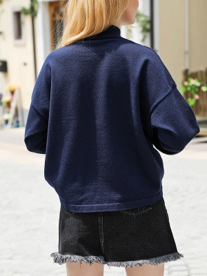 Royal blue Casual Long Sleeve Embroidered Shift Stand Collar Sweater_3