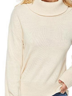 Solid Long Sleeve Casual Turtleneck Shift Sweater_7