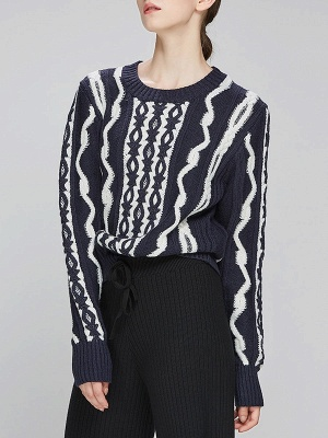 Navy Blue Cable Long Sleeve Casual Geometric Sweater_2