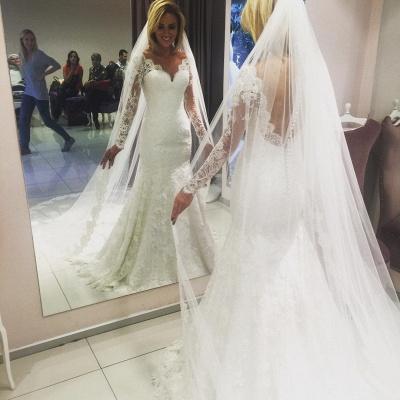 V-Neck Long Sleeves Open Back Lace Mermaid Wedding Dresses_3