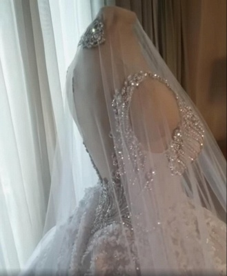Straps V-neck Crystal Ball Gown Wedding Dresses with Lace_2