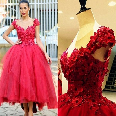 2019 Red Ball Gown Party Dresses 3D-Floral Appliques Hi-Lo Chic Prom Dresses_2