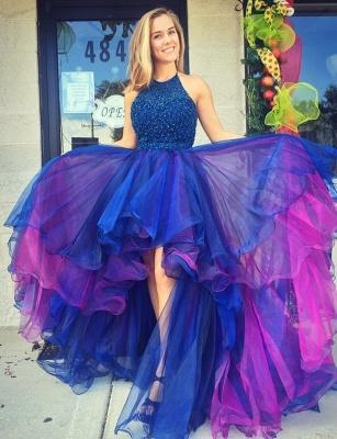 Beadings Hi-Lo Sleeveless Gorgeous Organza Prom Dress_2