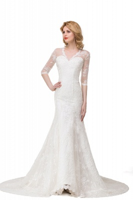 Zipper Glamorous V-Neck Half-Sleeves Lace Mermaid Wedding Dresses_2