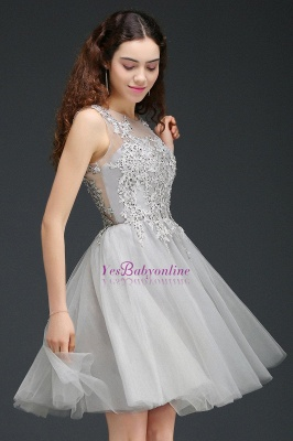 Lace Appliques Silver Jewel Sleeveless Short Homecoming Dress_5