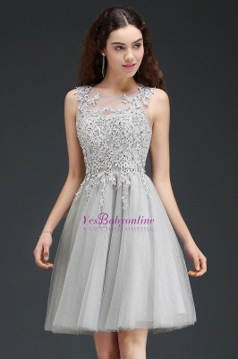 Lace Appliques Silver Jewel Sleeveless Short Homecoming Dress_4