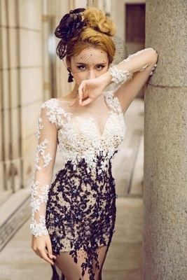 Long Sleeves Mermaid Prom Dresses | Lace Appliques Sheer Evening Gowns_1
