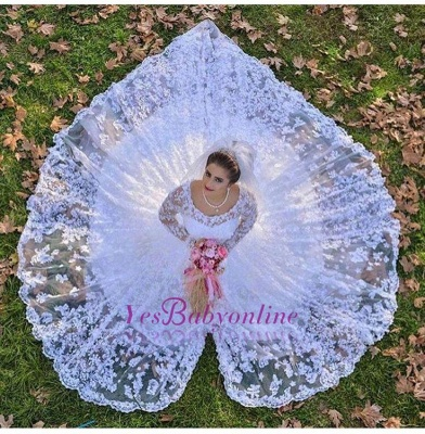 Luxurious Long Sleeves A-line White Lace Wedding Dresses_1