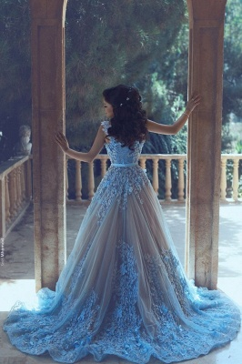 Luxury Blue Sleeveless 3D-Floral Appliques A-line Prom Dresses_3