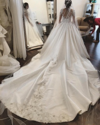 Charming Princess Ball Gown Wedding Dresses | See Through Long Sleeves Chapel Train Bridal Gowns_5