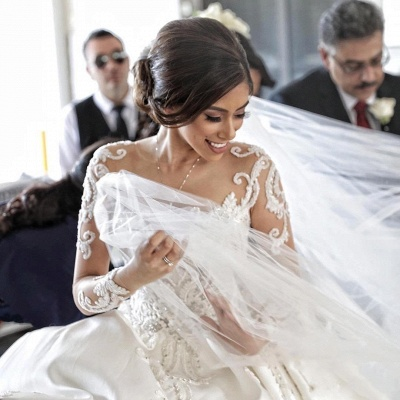 Charming Princess Ball Gown Wedding Dresses | See Through Long Sleeves Chapel Train Bridal Gowns_3