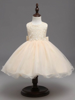 Cute A-Line Tulle Lace Scoop Sleeveless Flower Girl Dress with Bowknot_1