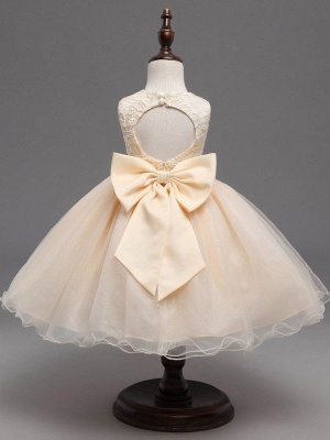 Cute A-Line Tulle Lace Scoop Sleeveless Flower Girl Dress with Bowknot_3