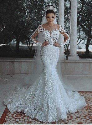 Glamorous Long Sleeves Wedding Dress | Mermaid Lace Bridal Gowns_1