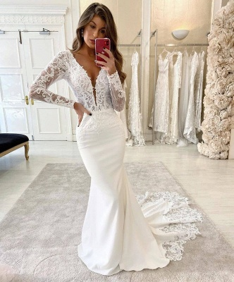 Graceful Deep V Neck Long Sleeve Applique Fitted Mermaid Wedding Dresses_2