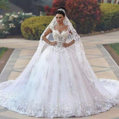Luxurious Lace Sleeveless Appliques Princess Wedding Dress_3