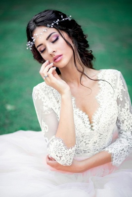 Tulle Outdoor Long Pink Lace Royal Sleeves Wedding Dress_3