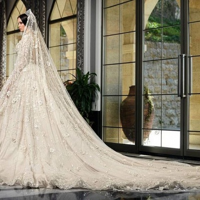 A-Line Lace V-Neck Wedding Dress | 3/4 Sleeves Appliques Cathedral Train Bridal Dress_5