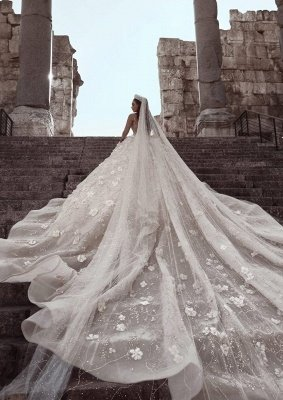 Glittery Floral Bridal Gowns  | See Through Neck Long Sleeves Ball Gown Wedding Dresses_5