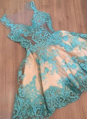 Sexy A-Line Homecoming Dresses | Lace V-Neck Sleeveless Cocktail Dresses_1