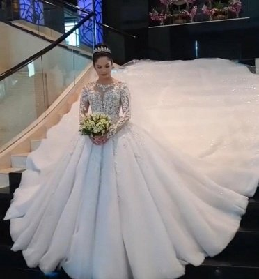Round Neck Lace Appliques Tulle Ball Gown Wedding Dresses with Long Sleeves_1