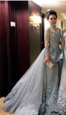 Grey Long Sleeves Pageant Dresses High Neck Appliques Modest Prom Dresses_3
