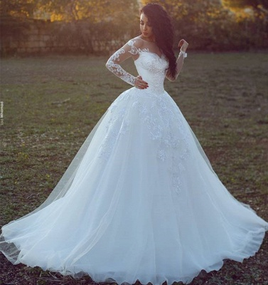 Tulle Glamorous Ball Gown Appliques Long Sleevess Wedding Dress_3
