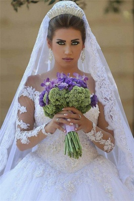 Lace Princess Ball Gown Tulle Beadings Appliques Long Sleevess Glamorous Wedding Dresses_2