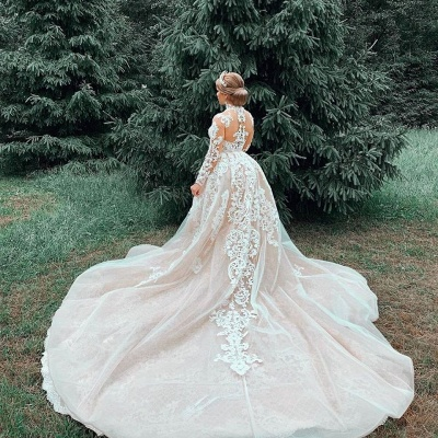 High Neck Sheer Lace Gorgeous Wedding Dresses with Long Sleeves_6